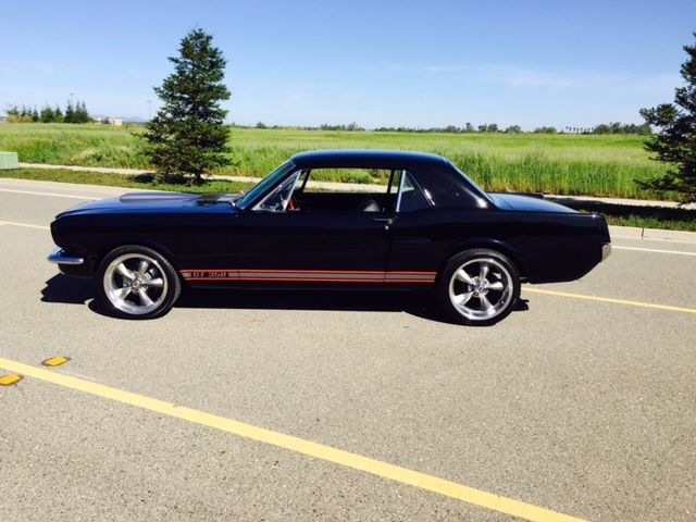 1965 66 Ford Mustang G T 350 Shelby Tribute Restomod 289