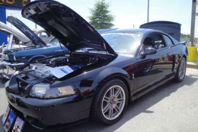 Mustang Terminator Black