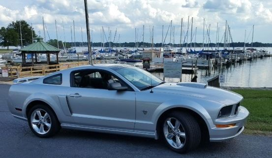 1zvht82h895109816 2009 45th Anniversary Mustang Gt