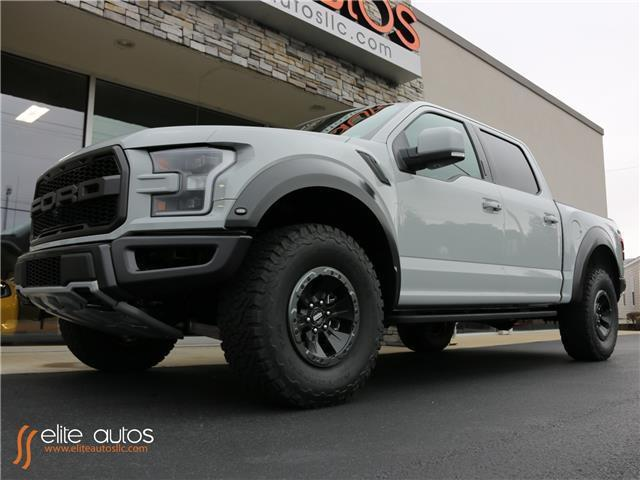 1ftfw1rg1hfa51028 2017 ford f 150 raptor hard loaded lots of extras available 22 inch wheels. Black Bedroom Furniture Sets. Home Design Ideas